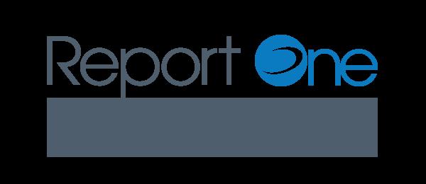Silver Partner solution business intelligence